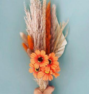 Pampas-Grass-image